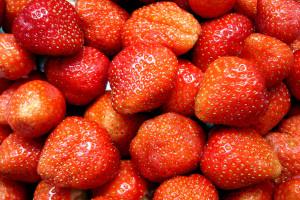 erdbeeren01hg-hufi